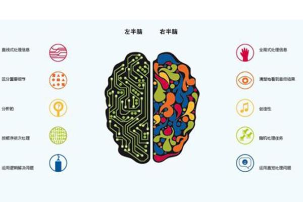 全脑教育加盟机构怎么样才能迅速的成功